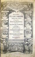Historia_plantarum_jean_bau